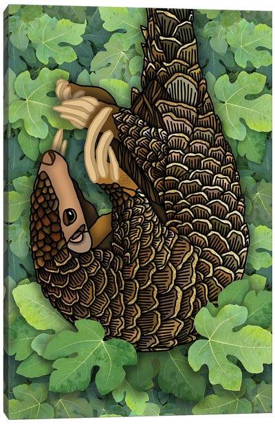 Pangolin Canvas Art Print
