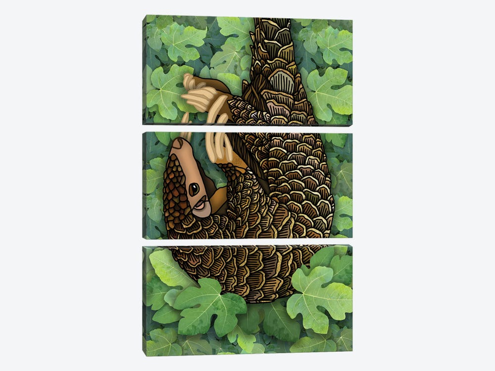 Pangolin by Angelika Parker 3-piece Canvas Artwork