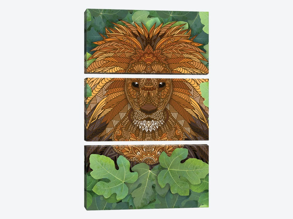 Lion King of the Jungle by Angelika Parker 3-piece Canvas Art Print