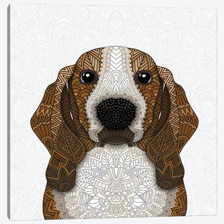 Basset Hound Canvas Print #ANG292} by Angelika Parker Canvas Art Print