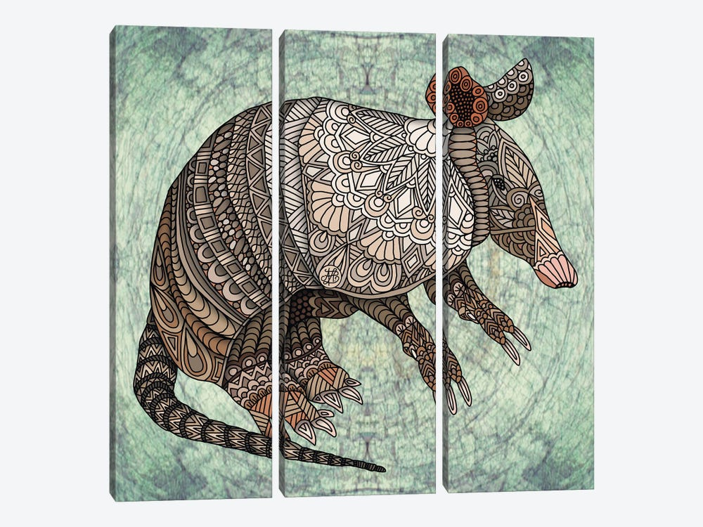 Armadillo by Angelika Parker 3-piece Canvas Wall Art