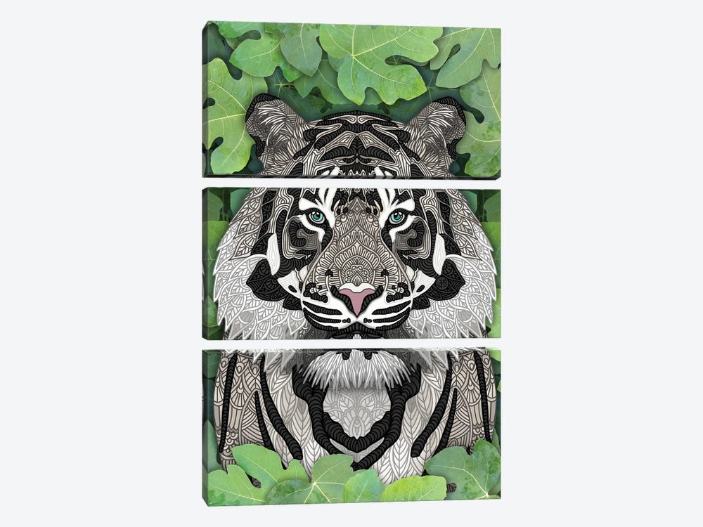 White Jungle Tiger by Angelika Parker 3-piece Canvas Art Print
