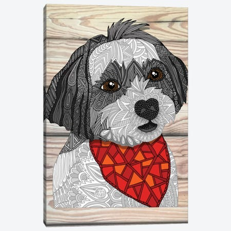 Max The Havanese Canvas Print #ANG62} by Angelika Parker Canvas Art Print