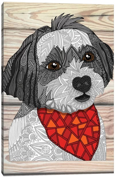 Max The Havanese by Angelika Parker Canvas Art Print