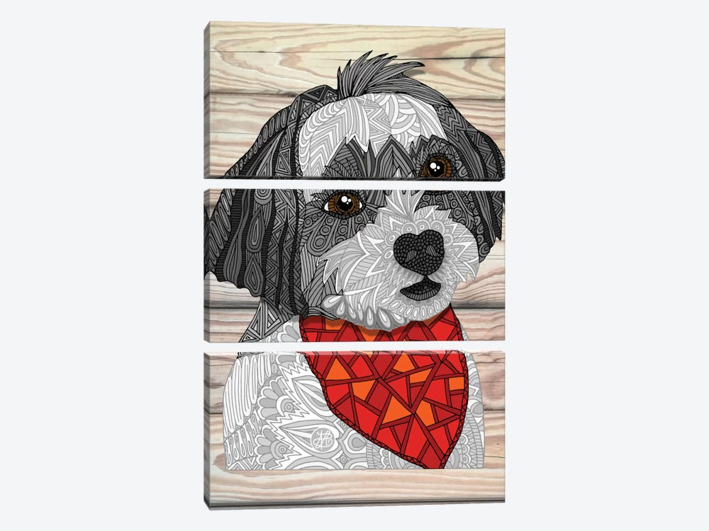 Max The Havanese by Angelika Parker 3-piece Canvas Artwork