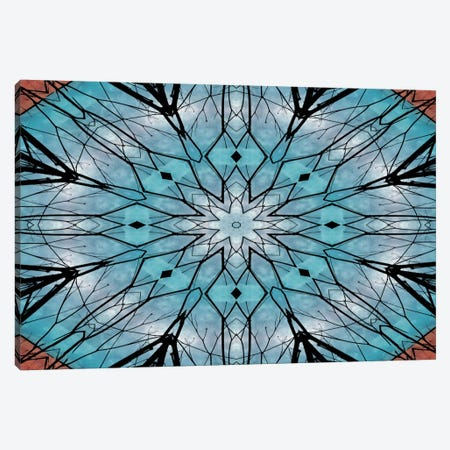 Snowflake Mandala Canvas Print #ANG88} by Angelika Parker Canvas Art Print