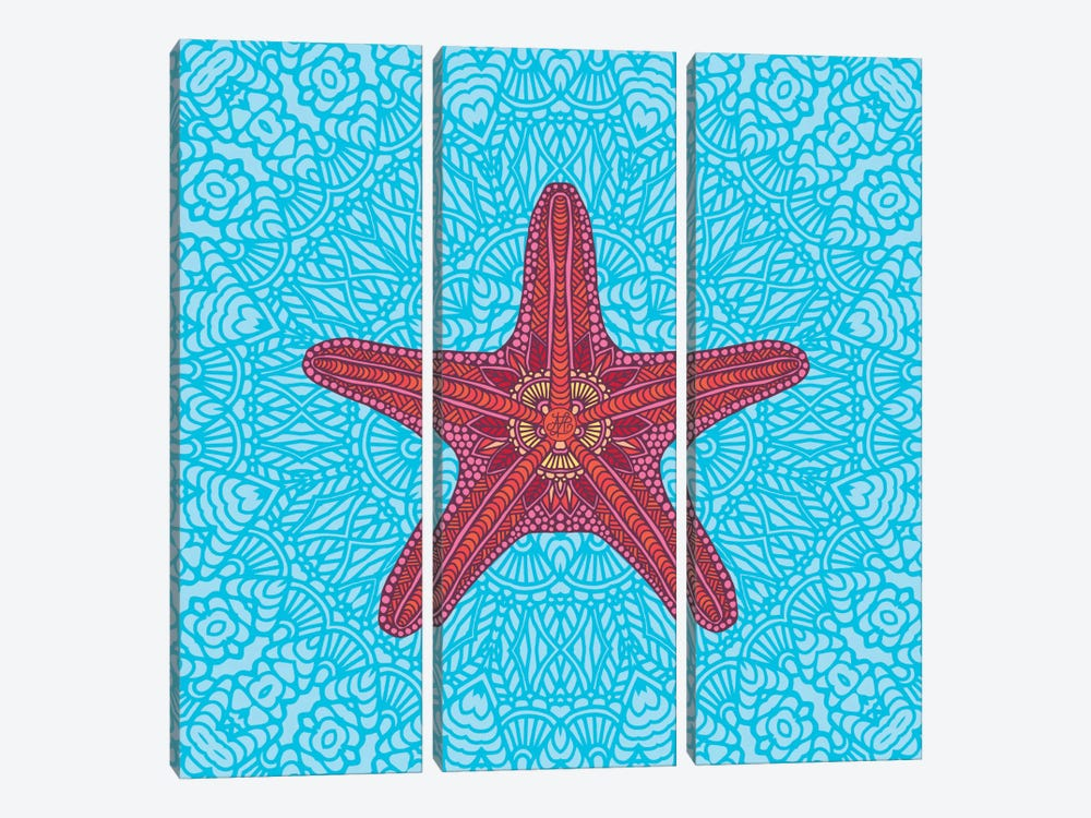 Starfish by Angelika Parker 3-piece Canvas Art Print