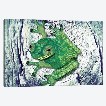 Tree Frog Canvas Print #ANG98} by Angelika Parker Canvas Art