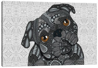 Black Pug by Angelika Parker Canvas Print