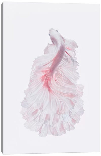 The White Dress Canvas Art Print