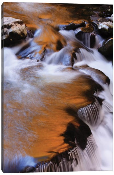 USA, Tennessee. Cascades along the Little River in the Smoky Mountains. Canvas Art Print