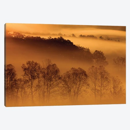 USA, Tennessee. Early morning fog in the Smoky Mountains. Canvas Print #ANN20} by Joanne Wells Canvas Artwork