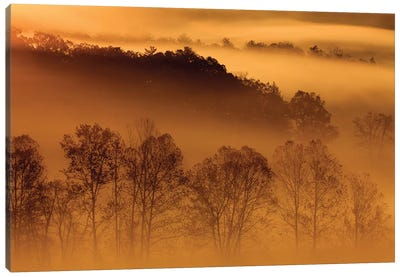 USA, Tennessee. Early morning fog in the Smoky Mountains. Canvas Art Print