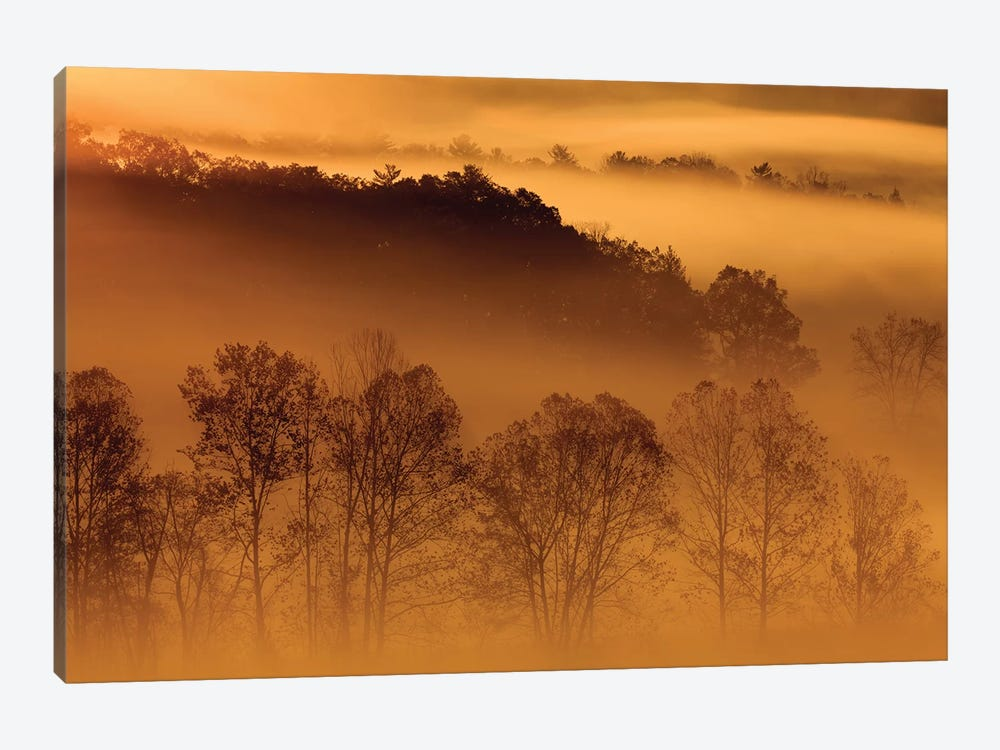 USA, Tennessee. Early morning fog in the Smoky Mountains. by Joanne Wells 1-piece Canvas Art