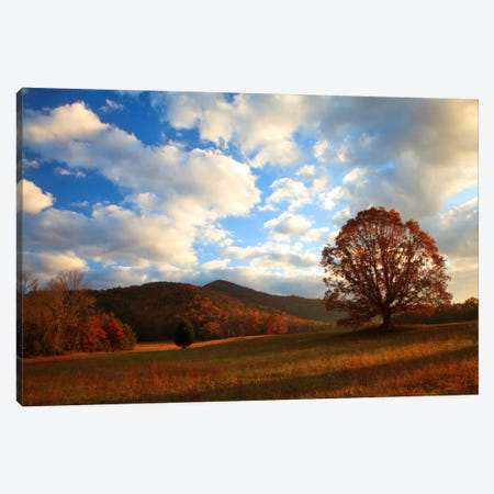 Late Autumn Sunrise, Cades Cove, Great Smoky Mountains National Park, Tennessee, USA Canvas Print #ANN4} by Joanne Wells Canvas Art Print