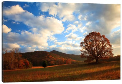 Late Autumn Sunrise, Cades Cove, Great Smoky Mountains National Park, Tennessee, USA Canvas Art Print