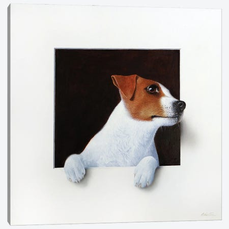 Jack Russell Canvas Print #ANO29} by Alan Weston Canvas Print