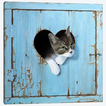 Kitten Canvas Print #ANO33} by Alan Weston Canvas Artwork
