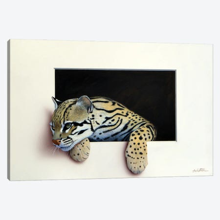 Ocelot Canvas Print #ANO45} by Alan Weston Canvas Artwork