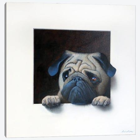 Winston Canvas Print #ANO80} by Alan Weston Canvas Print