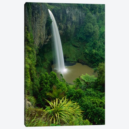 Bridal Veil Falls Near Raglan, New Zealand Canvas Print #ANR1} by Andy Reisinger Canvas Print