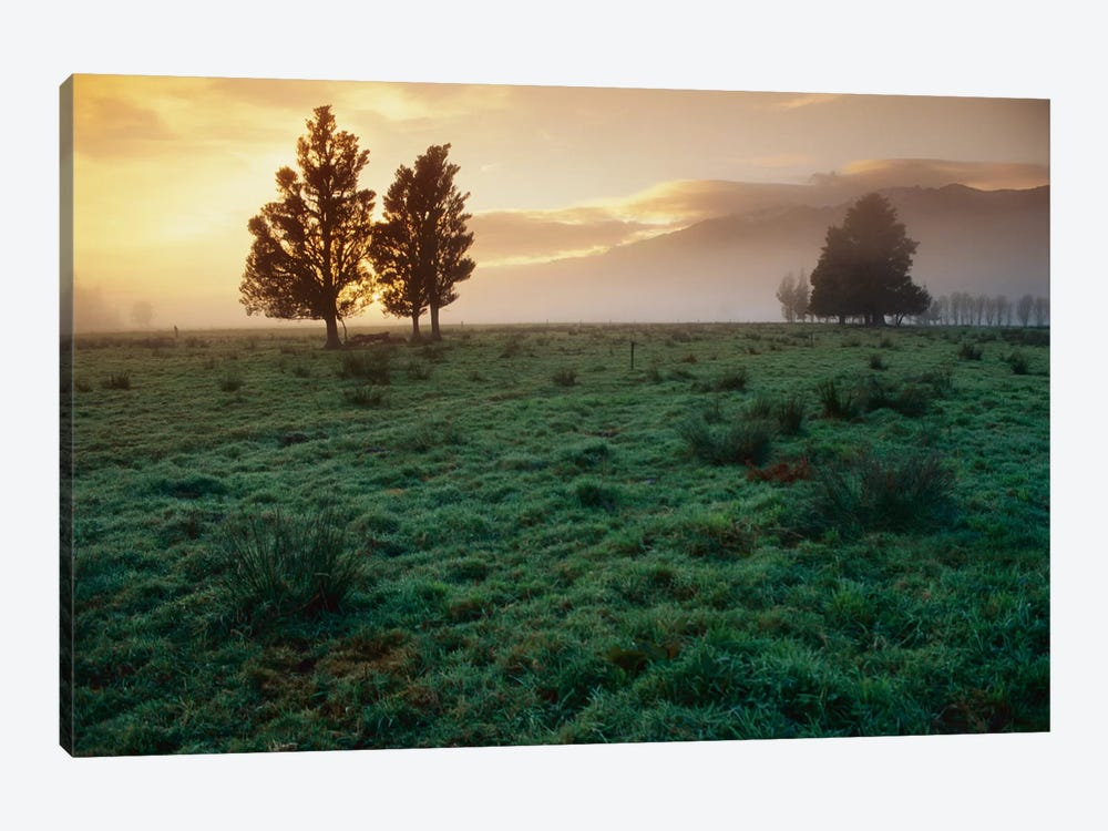 Dawn Light Over South Island Farmland, New Zealand by Andy Reisinger 1-piece Canvas Wall Art