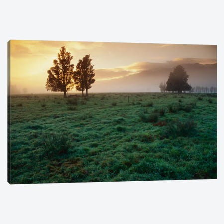 Dawn Light Over South Island Farmland, New Zealand Canvas Print #ANR2} by Andy Reisinger Art Print
