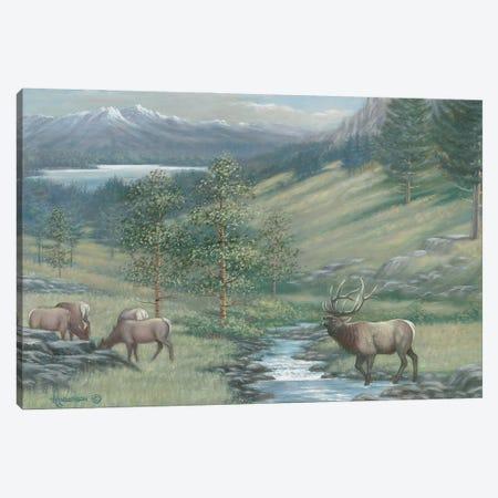 The Mountain Stream Elk Canvas Print #AOA27} by Anderson Art Art Print