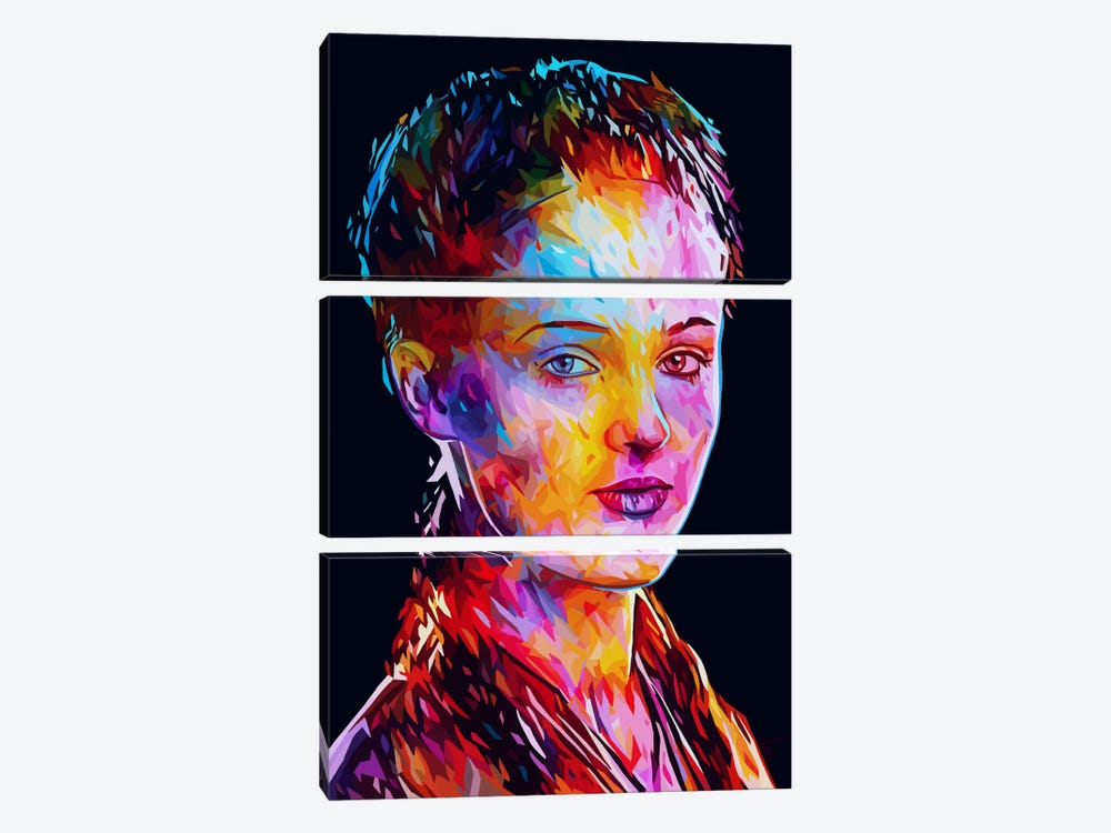 Sansa by Alessandro Pautasso 3-piece Canvas Artwork