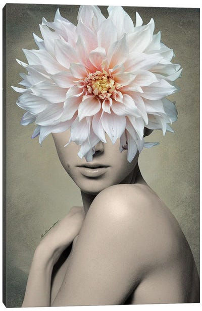 Dahlia Canvas Art Print