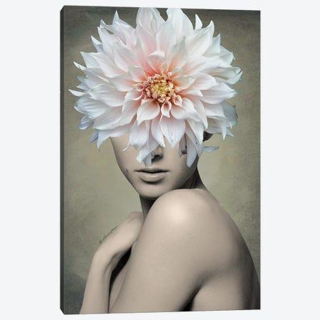 Dahlia Canvas Print #APH24} by Ana Paula Hoppe Canvas Print