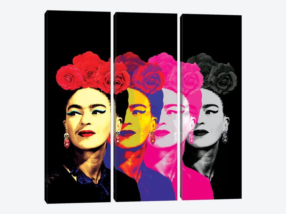 Fridas On Black by Ana Paula Hoppe 3-piece Canvas Artwork