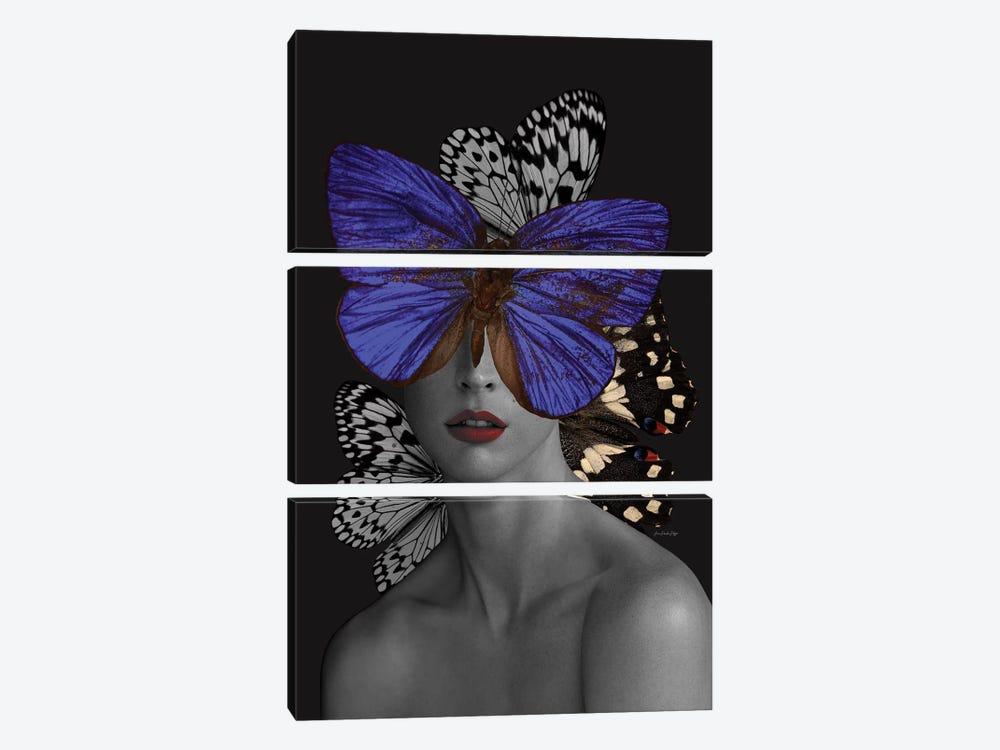 Lauren by Ana Paula Hoppe 3-piece Canvas Print