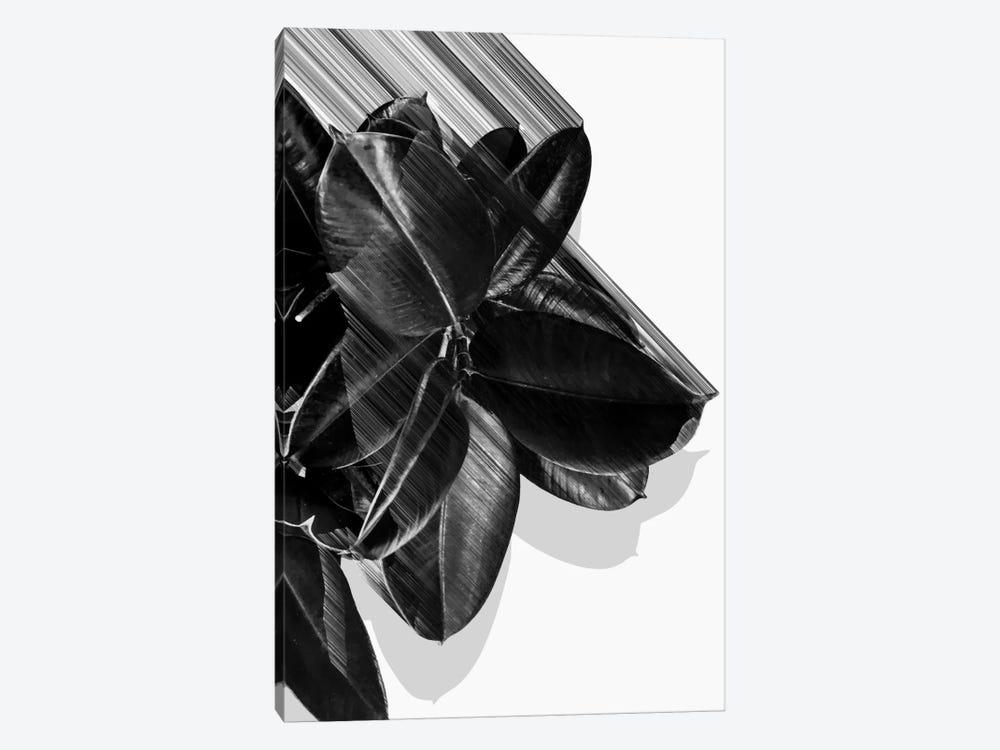 We Crush In B&W by Adam Priester 1-piece Art Print