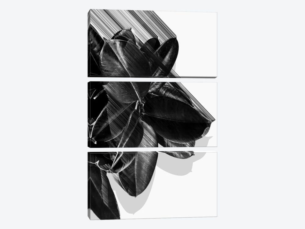 We Crush In B&W by Adam Priester 3-piece Canvas Art Print