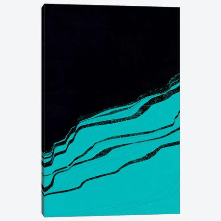 Cineraria Canvas Print #APR14} by Adam Priester Canvas Art