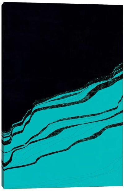 Cineraria Canvas Art Print