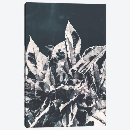 Dusk Canvas Print #APR23} by Adam Priester Canvas Art