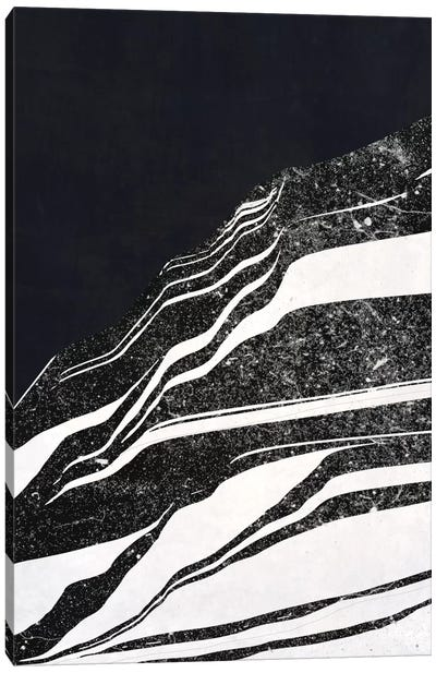Sequoia Canvas Art Print