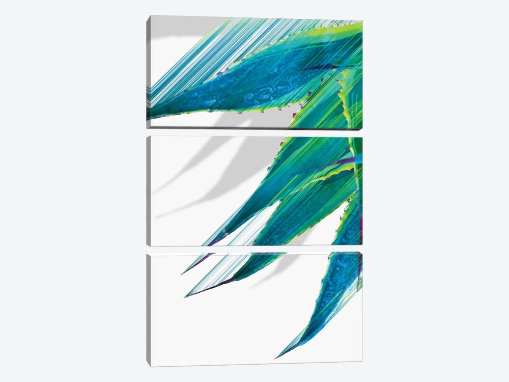 Soaring Agave by Adam Priester 3-piece Canvas Art Print