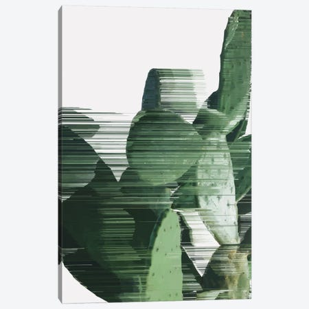 Sorted Cactus Canvas Print #APR82} by Adam Priester Canvas Artwork