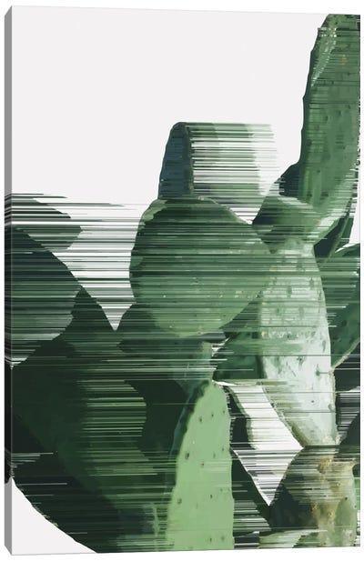 Sorted Cactus Canvas Art Print
