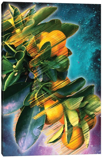 Space Fruit Canvas Art Print