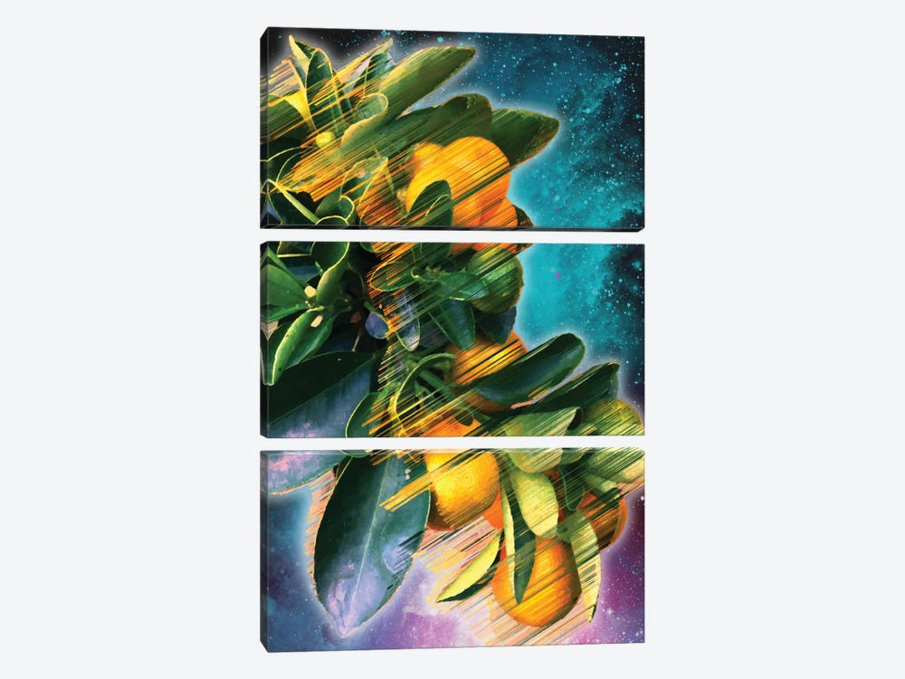 Space Fruit by Adam Priester 3-piece Canvas Art