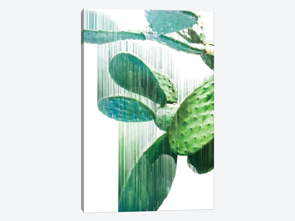 The Fastest Cactus 1-piece Canvas Art Print