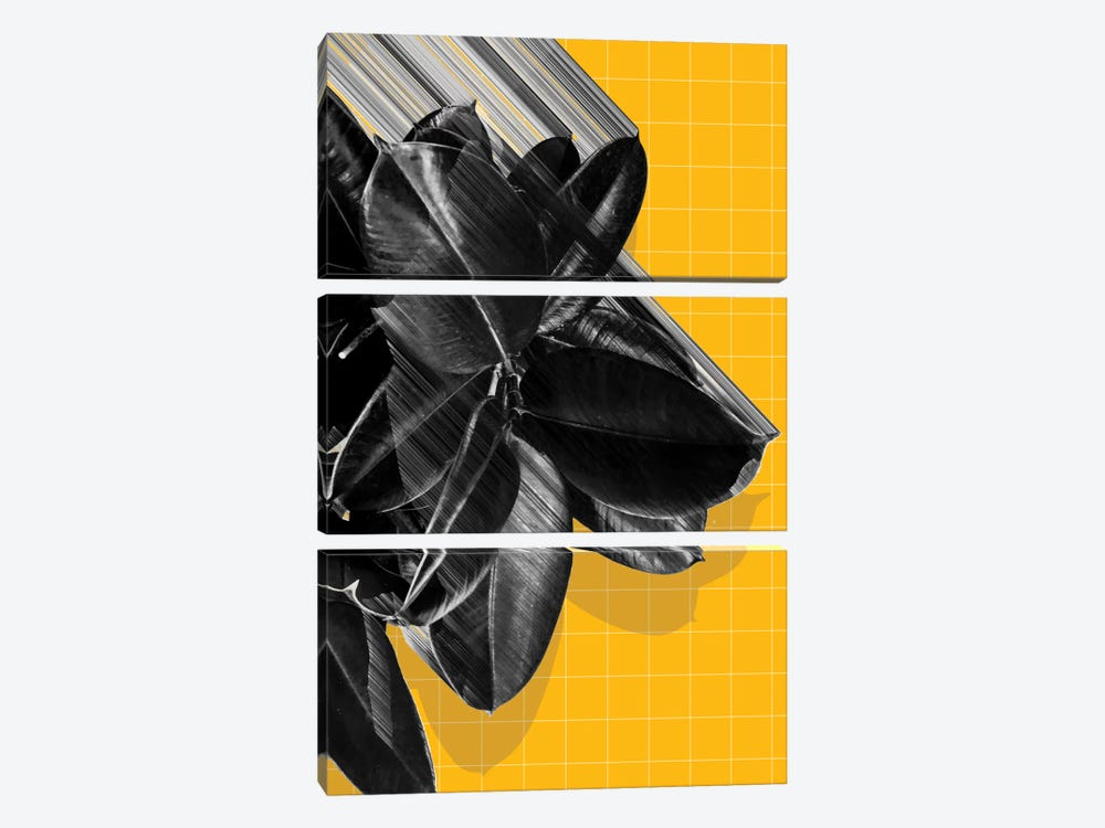We Crush by Adam Priester 3-piece Canvas Artwork