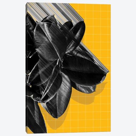 We Crush Canvas Print #APR99} by Adam Priester Canvas Art Print
