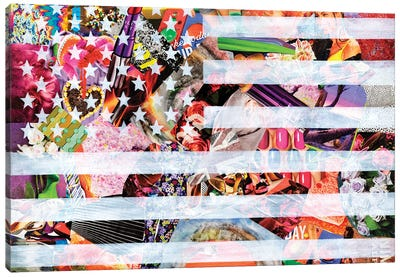 Murican Flag Canvas Art Print