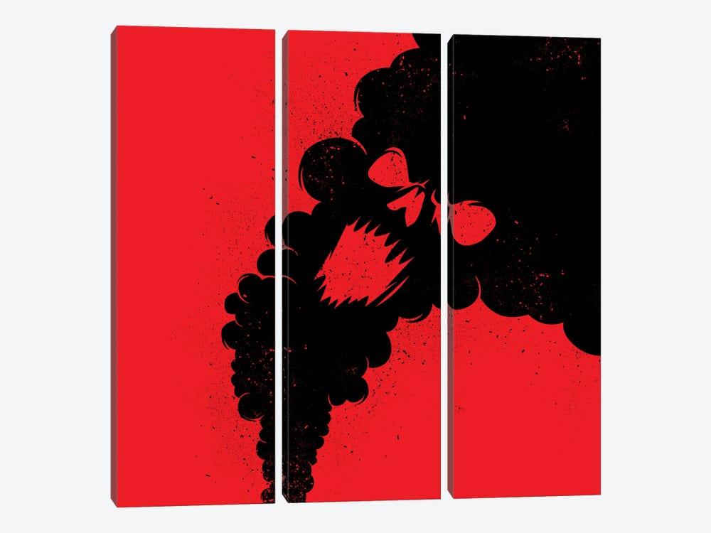 Dead Smoke by Alberto Perez 3-piece Canvas Art