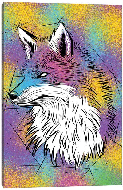 Sketch Fox Colorful Canvas Art Print